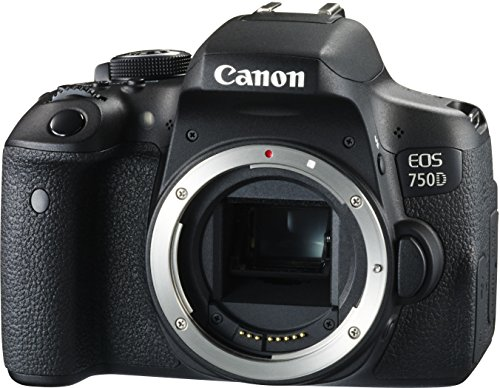 Canon EOS 750D SLR-Digitalkamera (24 Megapixel, APS-C CMOS-Sensor, WiFi, NFC, Full-HD) Kit inkl. EF-S 18-55 mm IS STM Objektiv schwarz - 7
